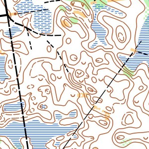 Pikasaare map1